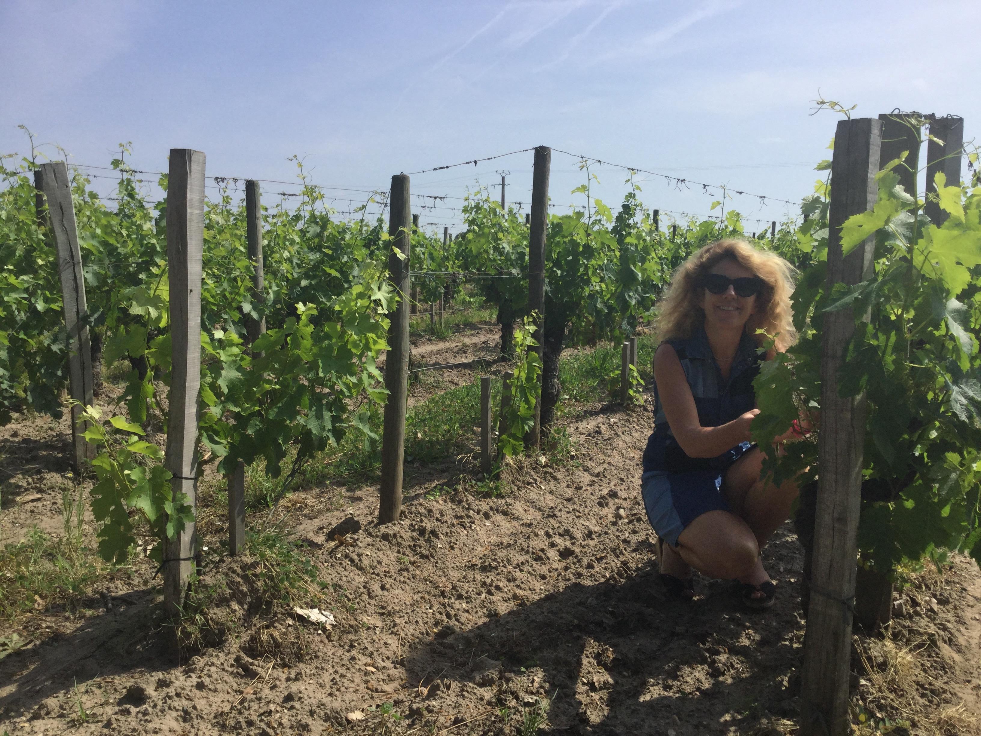 Wine trip to Bordeaux