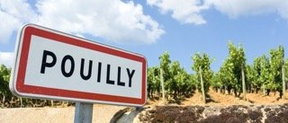 Pouilly, famous french city with wine agriculture