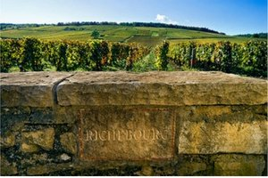 Wine tour to Burgundy