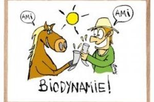 Biodynamie: changer notre relation au vivant